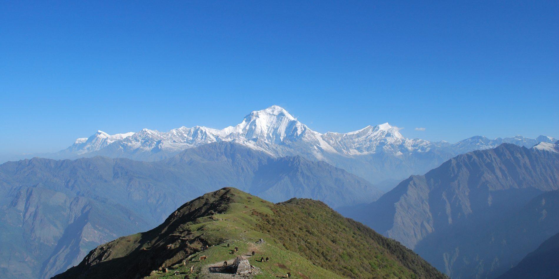 Mt. Dhaulagiri from Khopra Danda